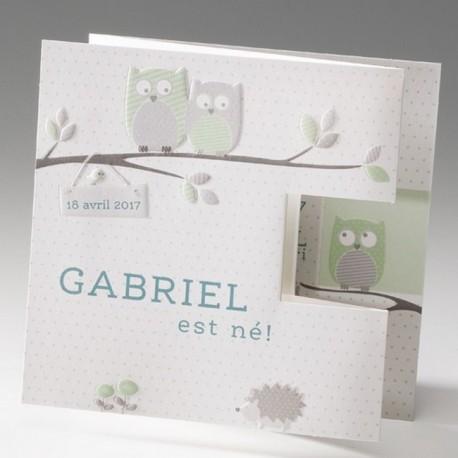 Faire-part de naissance depliant chouette grise et verte Belarto Baby Dreams 715010