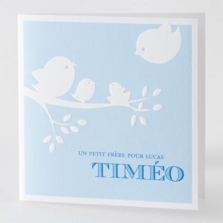 Faire-part de naissance garçon bleu oiseaux Buromac Baby Folly 584.078