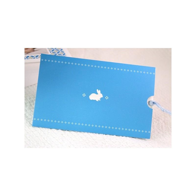 faire part naissance lapin photo pochette bleue fps petite for t 89348d. Black Bedroom Furniture Sets. Home Design Ideas