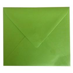 Enveloppe Ver Pomme 125 x 140 - Belarto 8121214