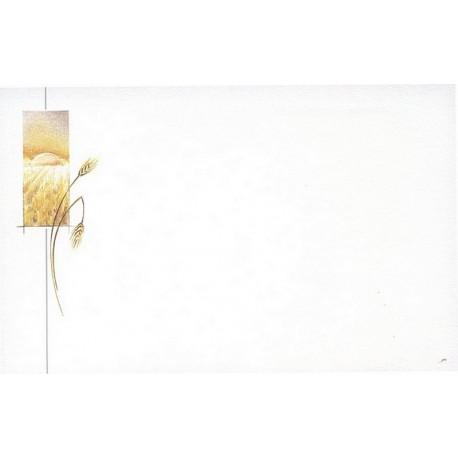 Carte de remerciement décés, deuil, funérailles, condoléances, obsèques BUROMAC 670.064