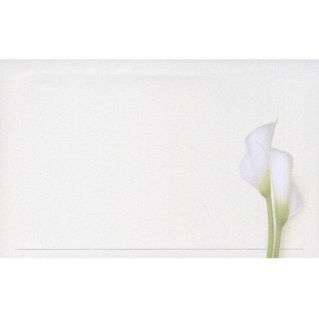 Carte de remerciement décés, deuil, funérailles, condoléances, obsèques DECORTE 6545