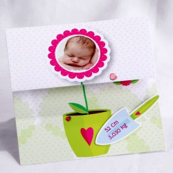 Faire-part naissance original fleur jardinage photo - Faire Part Select En Route 89446