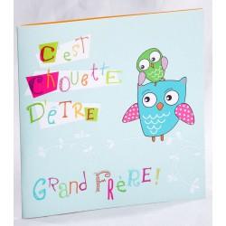 Faire-part naissance humoristique chouette bleu frère - Faire Part Select En Route 89455