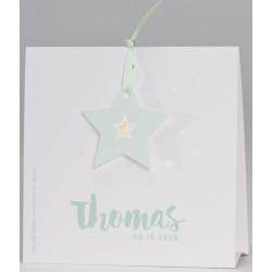 Faire-part naissance élégant chevalet étoile vert pâle Buromac Baby Folly (2016) 586.128-556.010