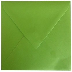 Enveloppe Vert Pomme 150 x 150 Belarto 8128106