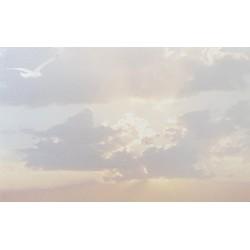 Carte de remerciement décés, deuil, funérailles, condoléances, obsèques ciel nuages DECORTE 6514