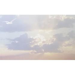 Carte de remerciement décés, deuil, funérailles, condoléances, obsèques ciel nuages DECORTE 6422